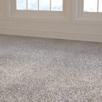Beige Carpet (0064) – Sunlight